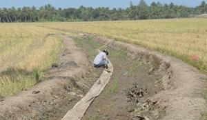 Sóc Trăng: Hỗ trợ người dân bị hạn hán và xâm nhập mặn