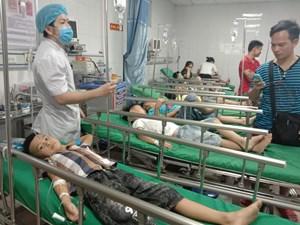 16 học sinh nhập viện vì bị ong đốt