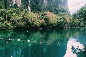 Quảng Bình: Thành lập Khu dự trữ thiên nhiên Động Châu - khe Nước Trong