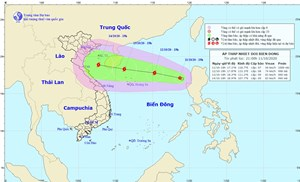 Một cơn áp thấp nhiệt đới mới đang tiến gần Hoàng Sa