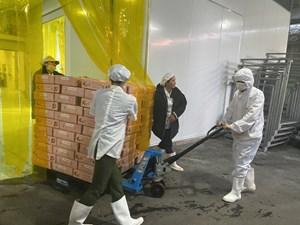 Trái cây Việt chinh phục những thị trường khó tính nhất