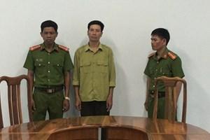 Gia Lai: Khởi tố, bắt tạm giam một nhân viên bảo vệ rừng