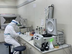 Vaccine ngừa Covid-19 'made in Vietnam': Vượt tiến độ 2 tháng