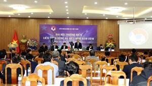 Không nên cố tổ chức đại hội thường niên của VFF vào tháng 8
