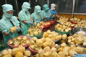 Thêm thách thức khi hàng Việt xuất khẩu