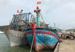 Bình Định: Hỗ trợ 70,59 tỷ đồng cho tàu cá đánh bắt xa bờ