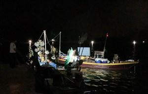 Bắt 5 tàu cá khai thác hải sản trái phép