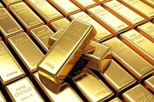 Giá vàng trong nước lập đỉnh 9 năm lên 56 triệu đồng/lượng