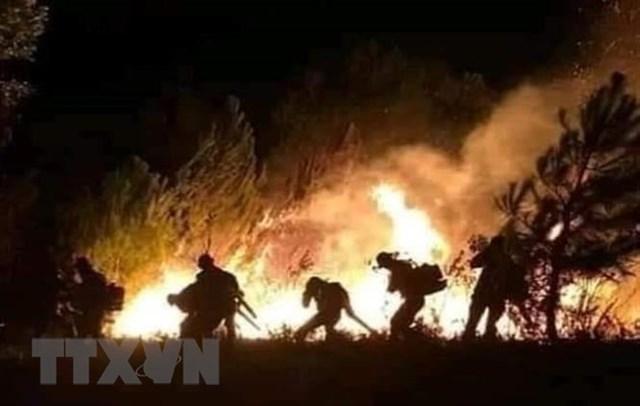 Lực lượng chức năng nỗ lực dập tắt cháy rừng. (Ảnh: TTXVN phát).