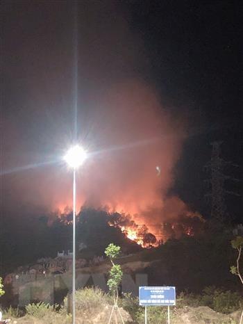 Ngọn lửa bùng phát lớn ở khu rừng thông. (Ảnh: Đỗ Trưởng/TTXVN).