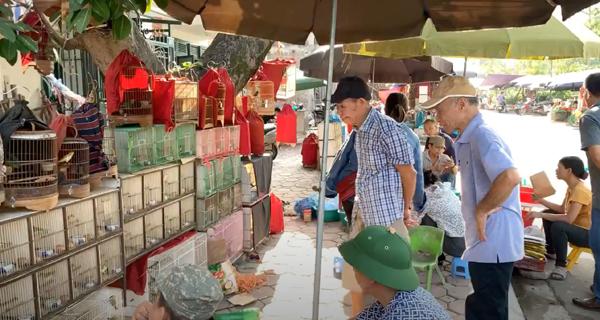 Hà Nội: Chợ chim cảnh tự phát gây ùn tắc giao thông - Ảnh 1