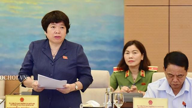 Chủ nhiệm Ủy ban Về các vấn đề xã hội Nguyễn Thúy Anh phát biểu tại phiên họp. Nguồn: Quochoi.vn.