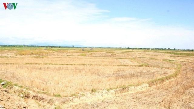 Cuối tháng 7, xuất hiện nhiều mưa dông làm nắng nóng dịu mát ở miền Bắc và miền Trung.