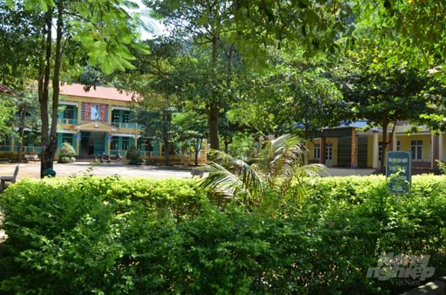 Ngôi trường mới khang trang và rợp bóng cây. Ảnh:Dương Đình Tường.
