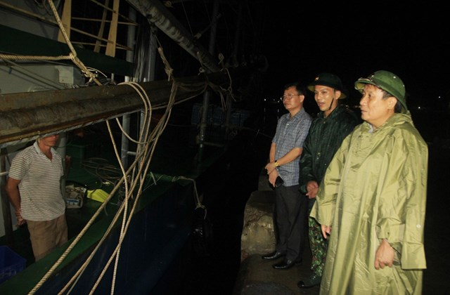 Lãnh đạo UBND tỉnh khảo sát khu vực neo đậu tàu thuyền.
