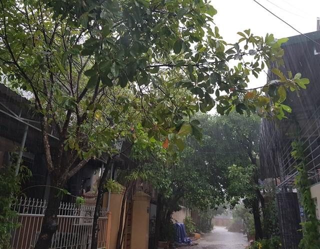 Ảnh hưởng của bão số 5, Quảng Trị mưa to - Ảnh 1