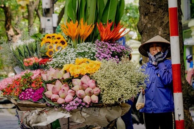 Mùa thu với những sắc hoa đặc trưng khiến ai đi qua cũng muốn dừng chân lại hít hà mùi hương thân thuộc. (Ảnh: Minh Hiếu/Vietnam+).