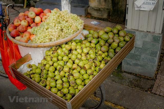 Mùa thu, mùa của những quả ngọt. (Ảnh: Minh Hiếu/Vietnam+).
