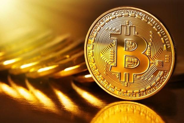 Tiền điện tử Bitcoin có thể tăng lên 100.000 USD/bitcoin vào năm 2025 - Ảnh 1