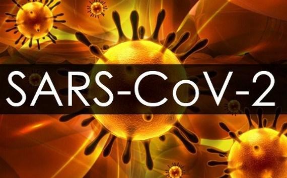 Thụy Sĩ: Nghiên cứu cơ chế virus SARS-CoV-2 gây cục máu đông - Ảnh 1