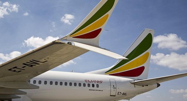 American Airlines chưa cho phép Boeing 737 MAX tiếp tục bay
