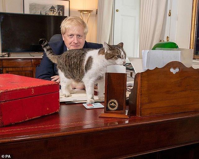 Dinh thủ tướng Anh có thêm 'đệ nhất khuyển' - 1