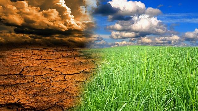 Chống biến đổi khí hậu: Sự thật đằng sau các cam kết
