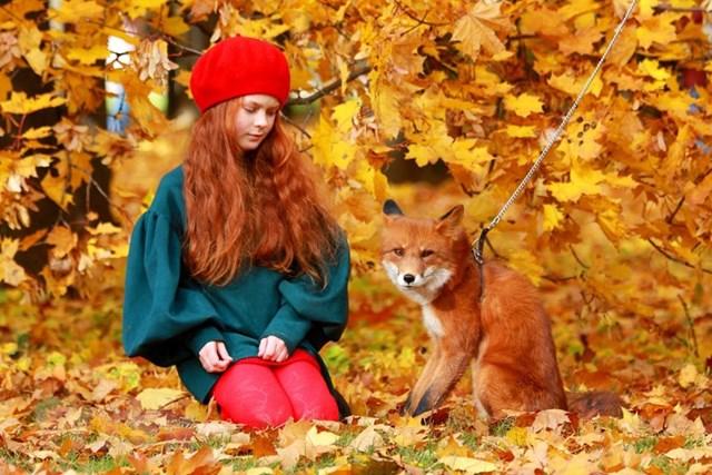 [ẢNH] Rực rỡ mùa thu vàng nước Nga