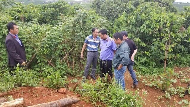 Hung thủsát hại 'chôn xác' 3 bà cháu lãnh án chung thân - 1