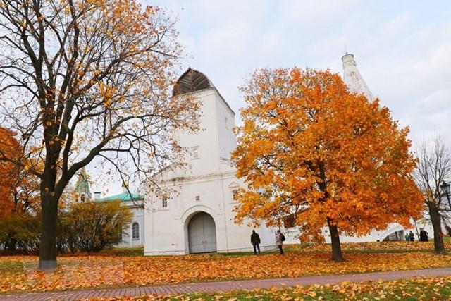 [ẢNH] Rực rỡ mùa thu vàng nước Nga - 3
