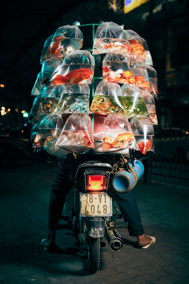 Ấn tượng Việt Nam - 1