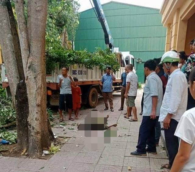 Cắt cành cây trong sân UBND huyện, một người đàn ông chết tại chỗ