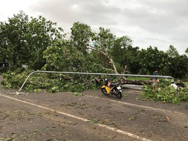 Bình Định, Phú Yên thiệt hại nặng do bão số 5 - 4