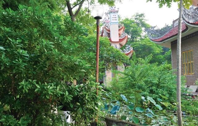 Chùa Việt trên đất Phật