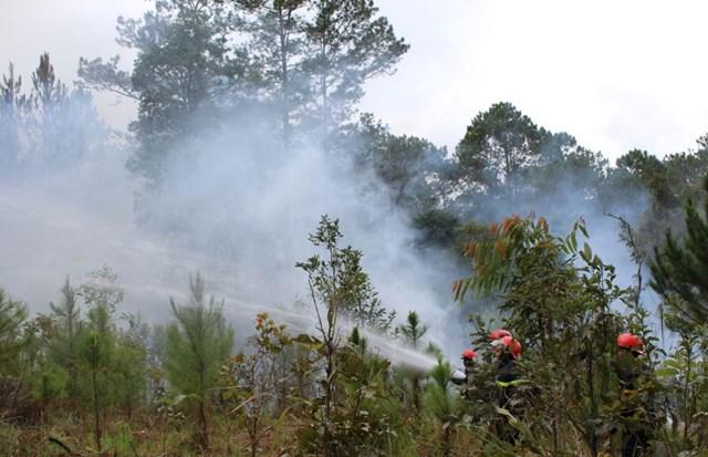 Tây Nguyên khẩn cấp ứng phó cháy rừng