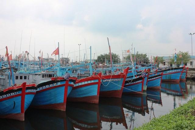 Bộ trưởng Nguyễn Xuân Cường làm việc với tỉnh Quảng Ngãi về ứng phó với bão số 6 - 1