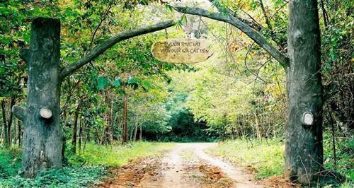 Chung tay giữ rừng