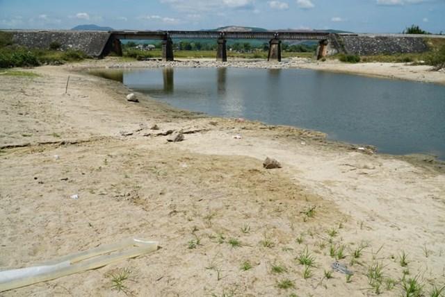 Quảng Ngãi: Hơn 1.000 ha đất sản xuất nông nghiệp bỏ hoang