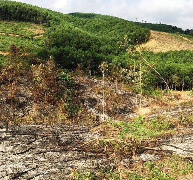 Nghệ An: Khởi tố 2 cán bộ huyện Yên Thành