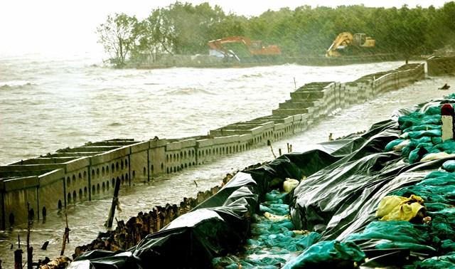 Xói lở uy hiếp  đê biển Cà Mau - 1