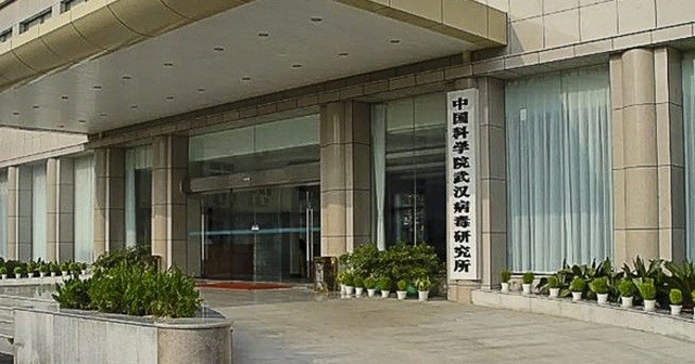 Phòng thí nghiệm Vũ Hán bác đồn đoán 'bệnh nhân số 0' phát tán virus Corona
