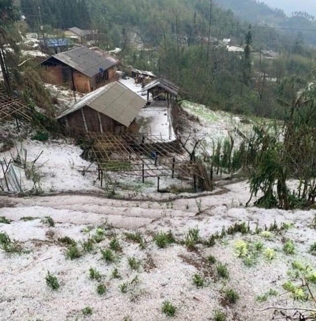 Thời tiết bất thường gây thiệt hại lớn