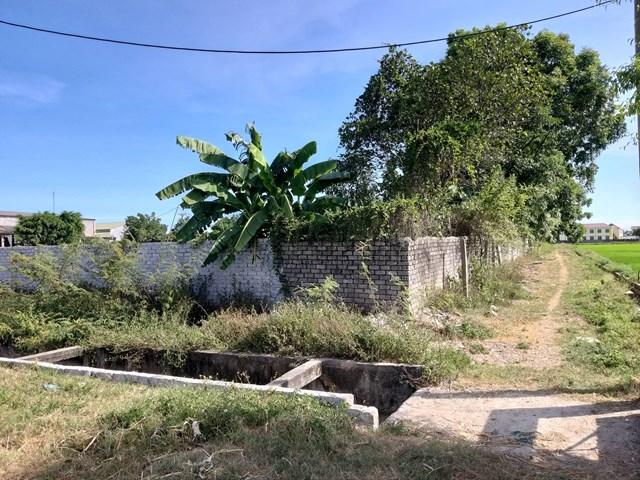 Nghệ An: Dân mất đất vì cho doanh nghiệp thuê