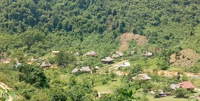 Nghệ An: Doanh nghiệp bỏ hoang hàng nghìn héc ta đất