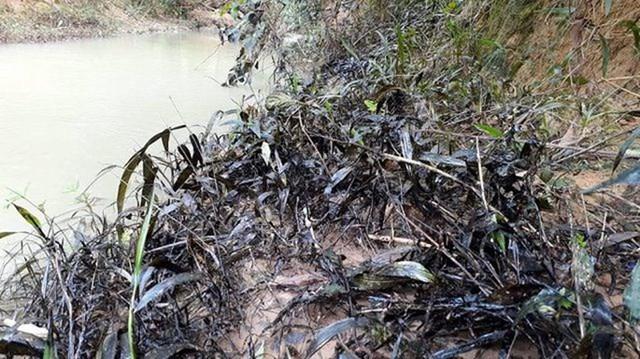 Quảng Trị: Phạt quản lý trạm bê tông để 200 lít dầu tràn ra sông Hiếu