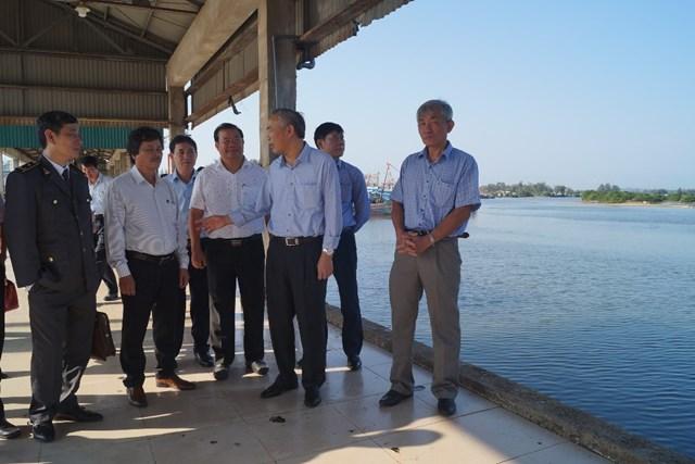 Bộ Nông nghiệp kiểm tra việc khai thác hải sản tại Quảng Ngãi - 1