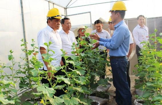 Đồng Nai: Huyện Xuân Lộc phấn đấu đạt huyện nông thôn mới hiện đại, bền vững