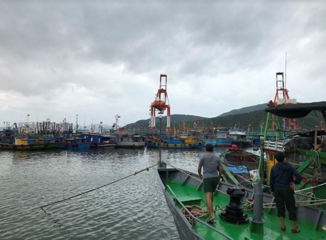 Khánh Hòa – Bình Định – Phú Yên: Khẩn cấp ứng phó bão số 5
