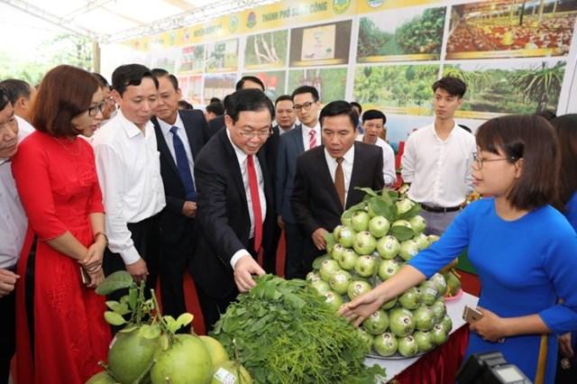 Thái Nguyên coi trọng sản xuất để phát triển nông thôn - 1