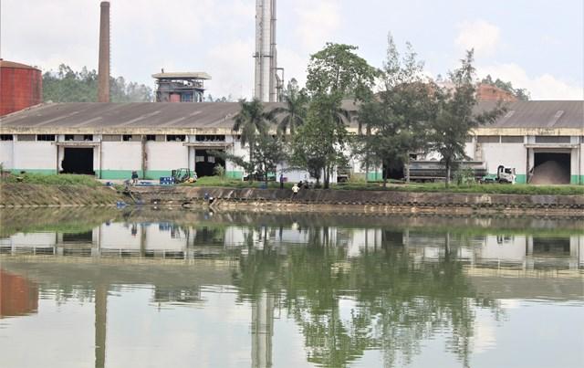 Quảng Nam: 3/8 thông số mẫu nước ở nhà máy cồn Đại Tân vượt quy chuẩn
